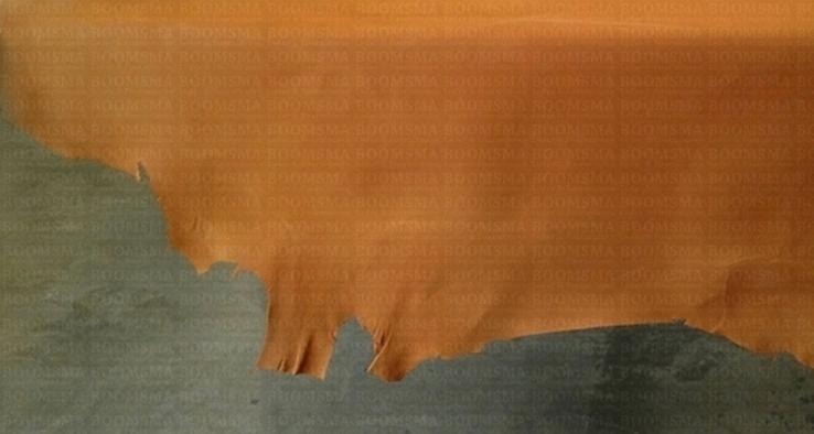 7c77c1c6ab1 Varkens, geiten en schapenleer rubriekfoto2